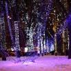 новогоднее оформление территории.jpg